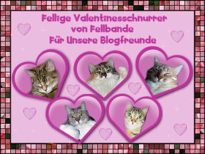 Fellbandes Valentinsschenki!