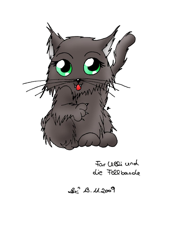 Fellbandes Katzi!